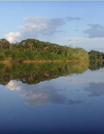 Ruta Selva Tour