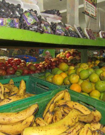 Distribuidora de Frutas y Verduras Sofia