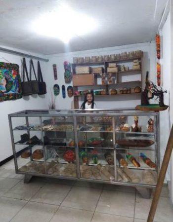 Arte en Casa Botaman Benach