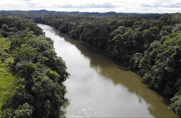 Rio Guamuez